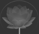 Lotus flower: a symbol of purity. Redbalifrog, your world in silver.